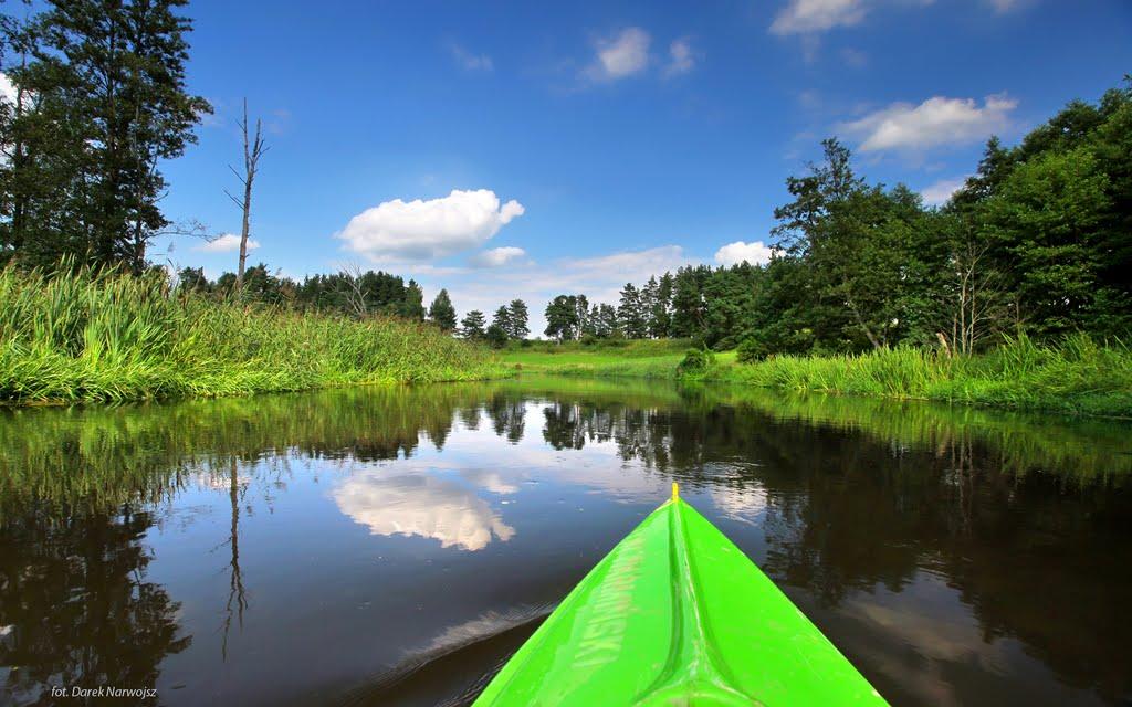 Spływ Łyną (fot. Darek Narwojsz)