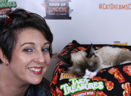 Grumpy Cat has no idea what Flash Collective is