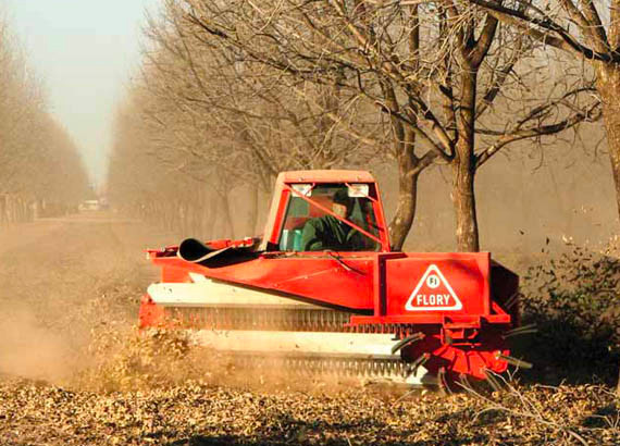 Photo of pecan harvesting machinery in action