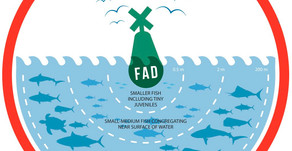 Sadly, FADs are not a fad
