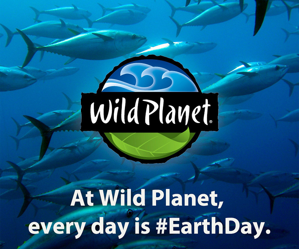 Photo of tuna with Wild Planet logo overlaid on it