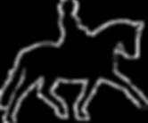horse, for sale, aquinna