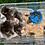 Thumbnail: Boîte de 100 grillons taille 6
