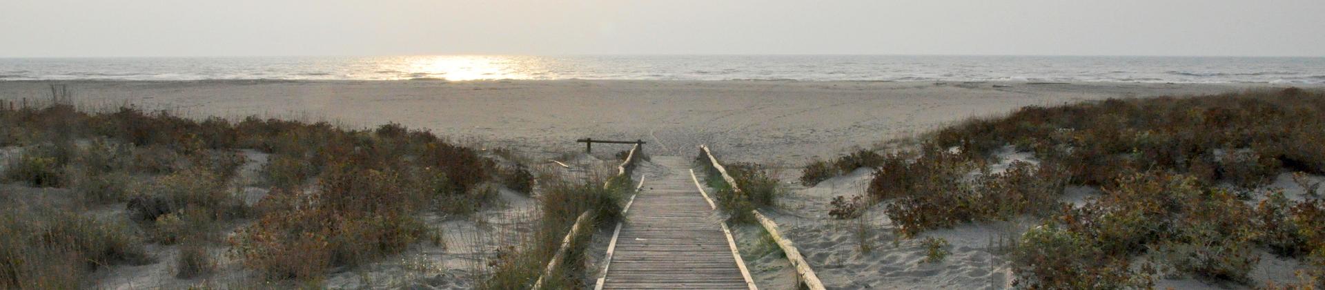 banner_spiaggia_viareggio.jpg