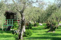 Az Agr Agriturismo Della Mezzaluna