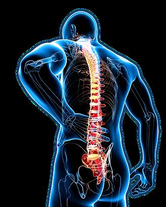 Rückenschmerzen (Nacken/Bein)