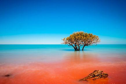 Crab-Creek-Broome-Australia-red-dirt-mee