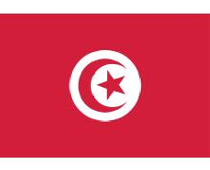 Les attentats abjects perpétrés contre la Tunisie.