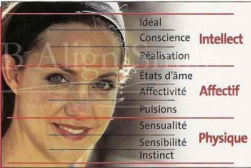morphopsychologie naturopathie
