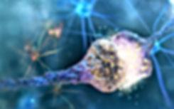 Saté e neuosciences