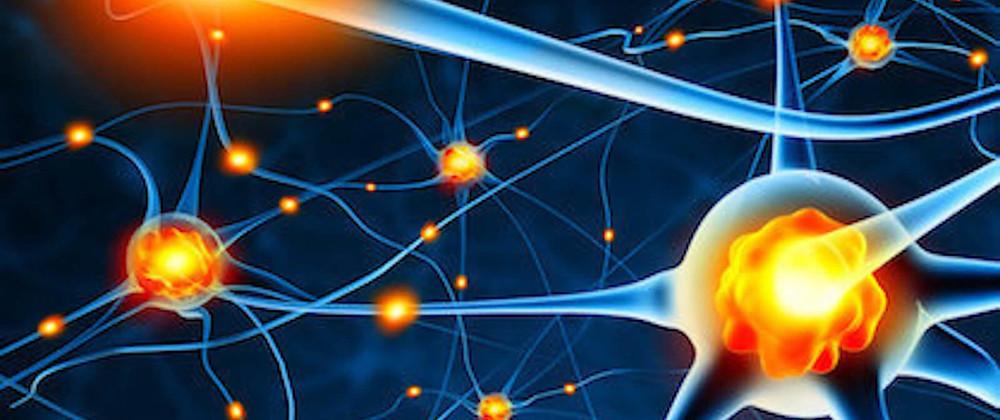 neurones en communication