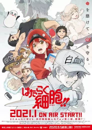 Cells at Work! 2nd Season
