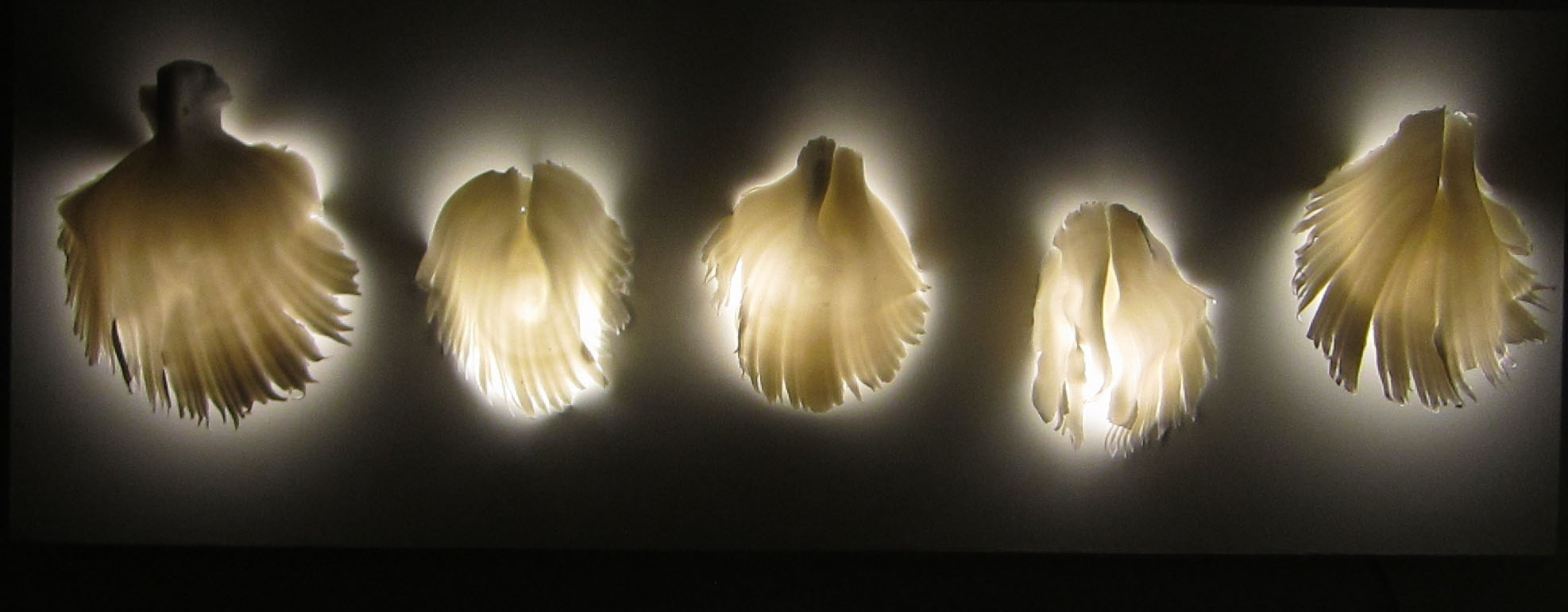 4. Angel wings installation.