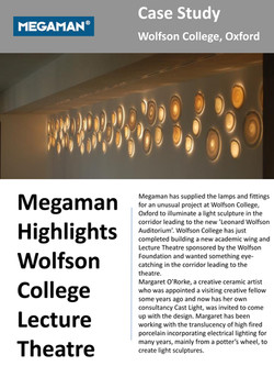 Megaman case study for Space Disks installation