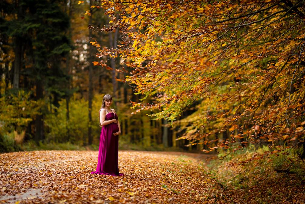 Sesja ciążowa, kobieta w ciąży_DSC1606.j