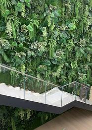 vegetazione.jpg