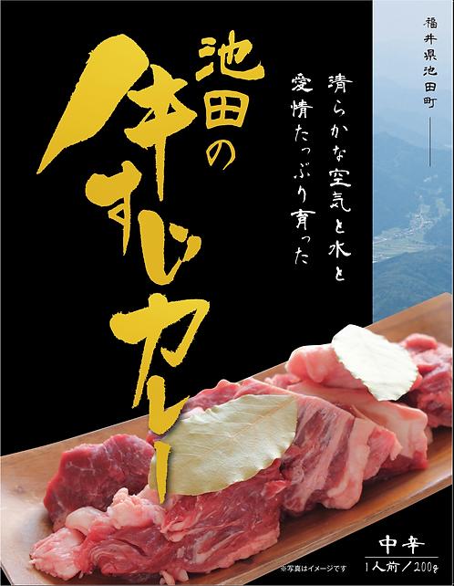 池田の牛すじカレーセット販売限定