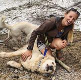 When doggy photo shoots don't go accordi