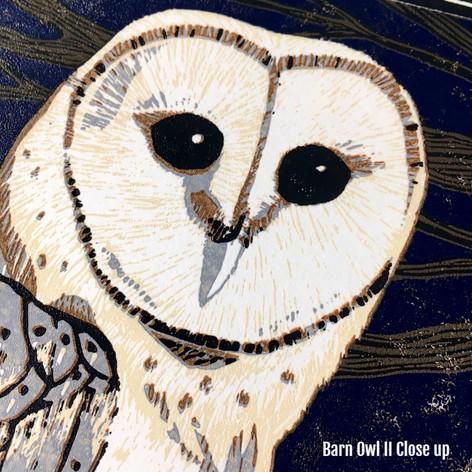 MegaLilyDesign Reduction Linocut Print Barn Owl II