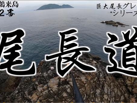 松田ウキでの巨大尾長の釣り方Youtubeにて公開