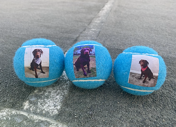 NTB - Personalised Coloured dog balls - Photo edition