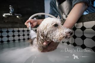 bath 4.JPG.jpg