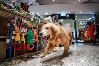 shop 2.JPG.jpg