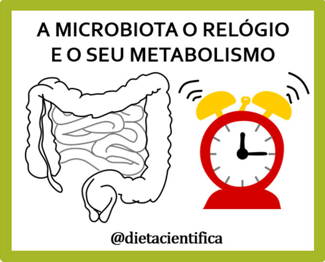 Bactérias, metabolismo e os relógios no seu corpo