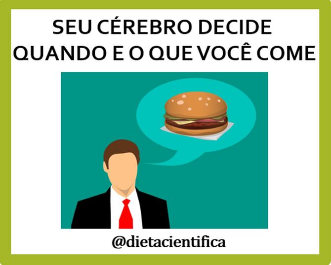 Seu cérebro decide quando e o que você come! - Your brain decides when and what you eat!