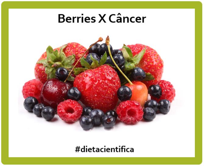 Berries X Câncer