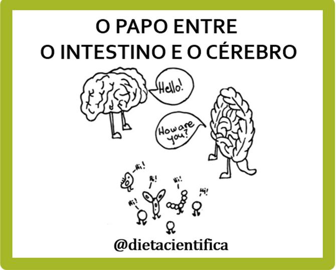 O papo entre o intestino e o cérebro