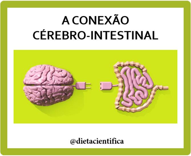 Como seu intestino se comunica com seu cérebro