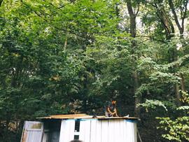Jirka Pavliš dodělává střechu chlívku pro kozy.