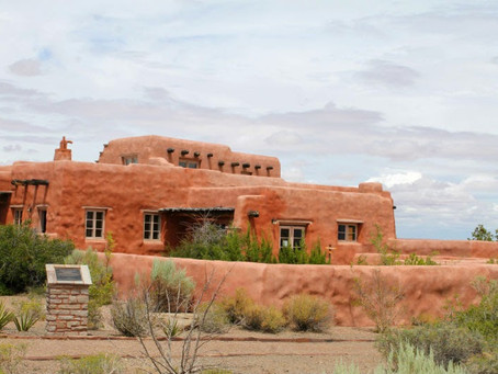 Petrified Forest Photography