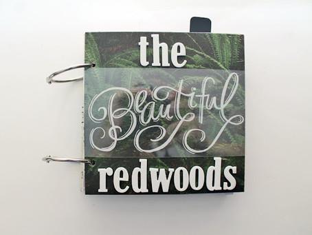 The Redwoods – A Foiled Mini Album