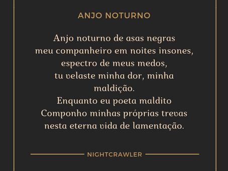 Anjo Noturno