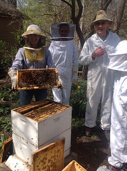 johnson with bee group.jpg