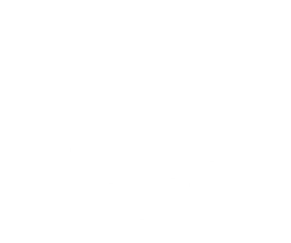 fist-clipart-11 wit.png
