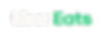 UE_Logo_Horizontal_RGB_Salt Green@2x.png