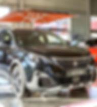 Peugeot Salins_edited.jpg