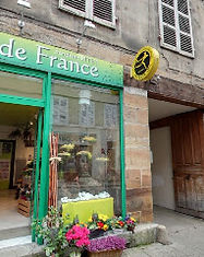 Fleur de France.jpg