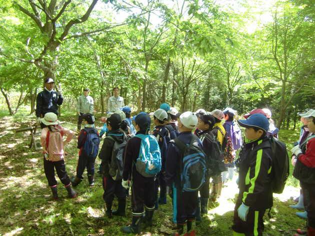 知小2018-森林の大切さについて説明を受ける児童
