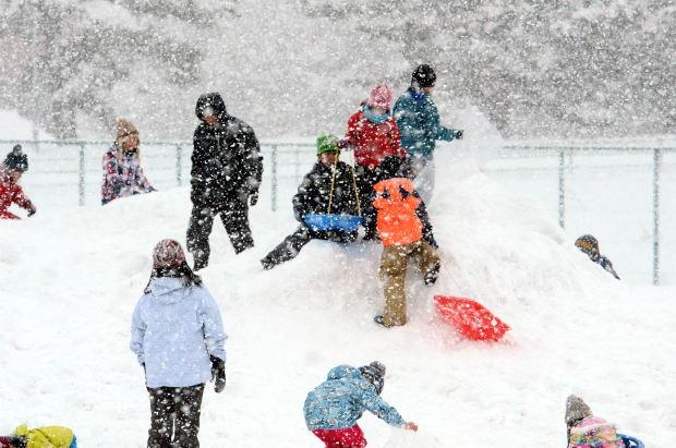 知小2019-1年生雪山で遊ぶ