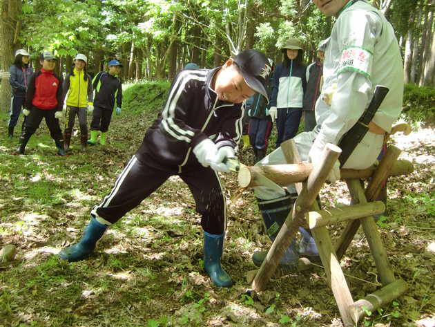 知小2018-必死に木を切る児童