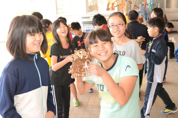 知小2018-4年生椎茸収穫