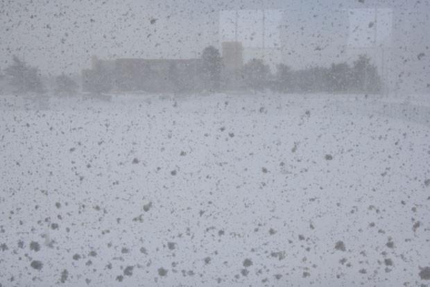 知小2018-猛吹雪