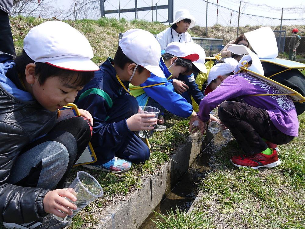 知小2018-稚魚を大事そうに放流する子供たち