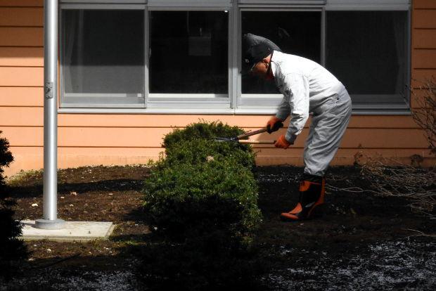 知小2019-公務補さんが木の剪定をしてくれました