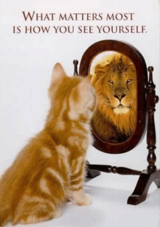 Life Lesson: Lionhearted - Extraordinarily Courageous