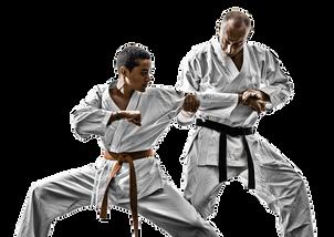 Martial Arts Classes in Tilak nagar
